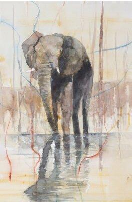 Fototapeta Oryginalny akwarela, słoń stoi w jeziorze.