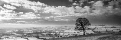 Fototapeta Oszałamiająca zimą pokryte śniegiem krajobraz panoramiczny wsi w