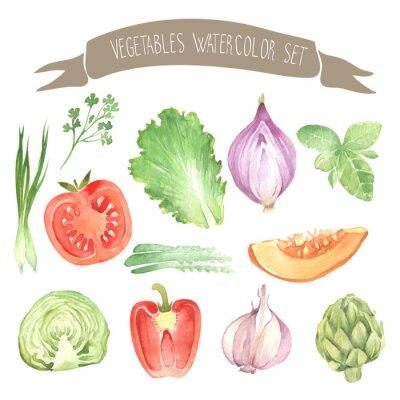Fototapeta Other fresh vegetables watercolor  set