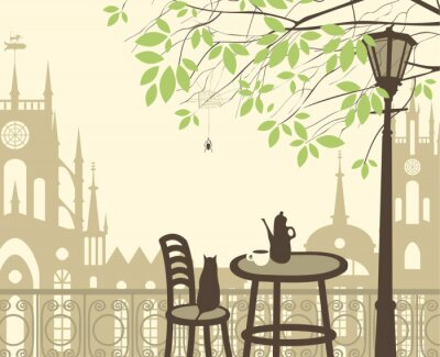 Fototapeta outdoor cafe w starego miasta z kotem pająka