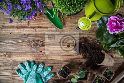 Fototapeta Outdoor narzędzia ogrodnicze i zioła