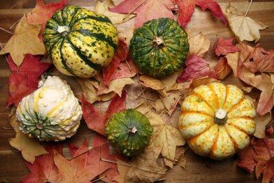 ozdobne dynie i liści jesienią na Halloween