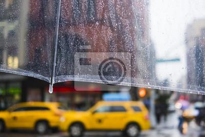 Fototapeta Pada w Nowym Jorku