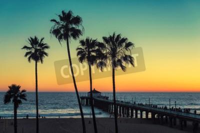 Fototapeta Palm w Kalifornii Plaży. Vintage przetwarzane. Moda podróży i koncepcji plaży tropikalnych.