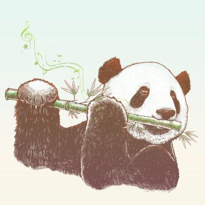 Fototapeta Panda, bambus muzyk