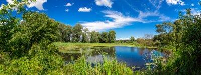 Fototapeta Panorama letnich rano jeziora