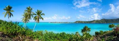Fototapeta panorama South Sea z palmami