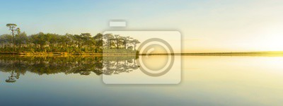 Panoramic view of trees on the lake with fog at nation park in Thailand.