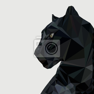 Fototapeta Panther na niskim poziomie