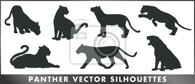Fototapeta Panther vector silhouettes