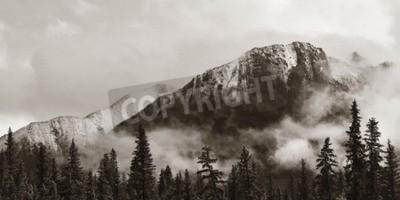 Fototapeta Park Narodowy Banff widok panorama z mgliste góry i lasów w Kanadzie.
