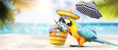 Fototapeta Parrot jak rajski ptak na plaży - koncepcja wakacyjne