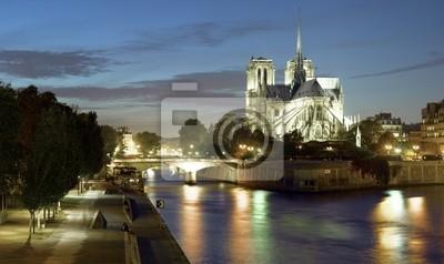 Fototapeta Paryż: Ile de la Cite i Katedra Notre Dame