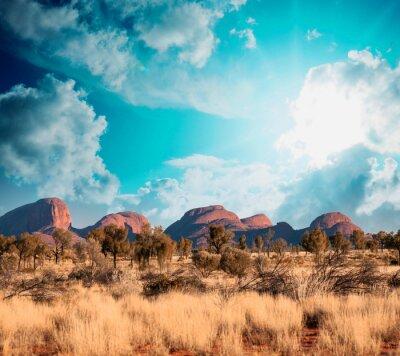 Fototapeta Pejzaż australijski Wieś