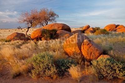 Fototapeta Pejzaż z granitowych głazów, drzew i błękitne niebo, Namibia, Afryka Południowa