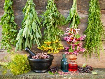Fototapeta pęki ziół leczniczych na drewniane ściany, zaprawy z suszonych roślin