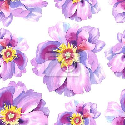 Peony kwiat wzór w akwareli. Może być używany do: tło, plakat, drukuj, romantyczny zaproszenia, dekoracje, podobieństw lub wzoru.