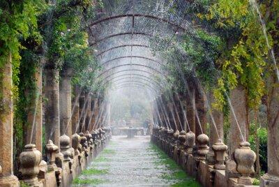 Fototapeta Pergola w ogrodach Alfabia, Mallorca