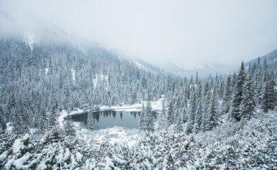 Fototapeta Pi? Kny zimowy krajobraz z górskie jezioro w zamieci. Tatry Zachodnie na Słowacji