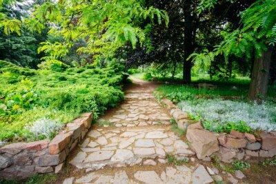 Fototapeta Piękna aleja w parku. Krajobrazowe projektowanie ogrodu