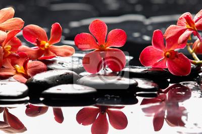 Piękna czerwona orchidea z kamieni terapii