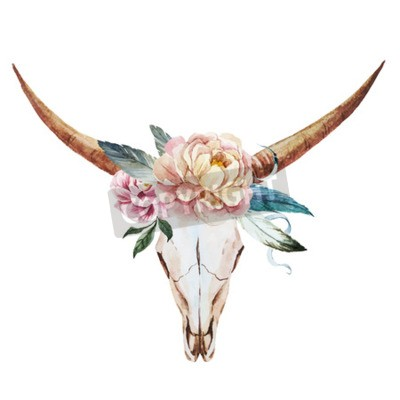 Fototapeta Piękna grafika wektorowa z ładną akwarelą czaszki