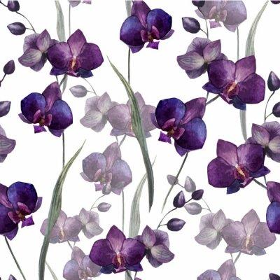 Fototapeta Piękna orchidea flower4
