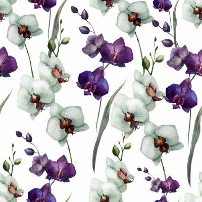 Fototapeta Piękna orchidea flower7