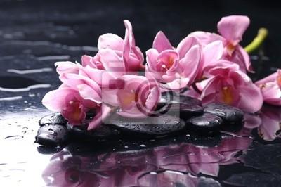 piękna orchidea i kamienie z kropli wody
