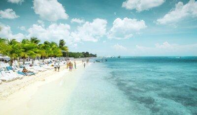 Fototapeta Piękna piaszczysta plaża na wyspie Cozumel, Meksyk