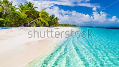 Fototapeta Piękna plaża z palmami i nastrojowym niebem. Wakacje tło wakacje koncepcja wakacje. Rajska plaża Malediwy. Luksusowy podróż letnie wakacje tło koncepcja.