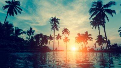 Fototapeta Piękna tropikalna plaża z palmy sylwetki o zmierzchu.