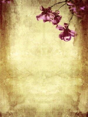 Fototapeta Piękne grunge tła z magnolii
