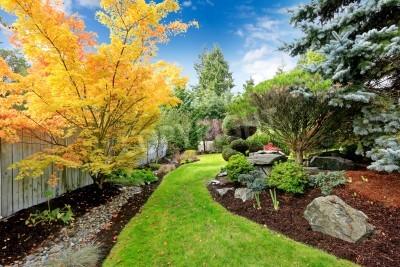 Fototapeta Piękne podwórko projektowania krajobrazu Widok kolorowych drzew i krzewów ozdobnych przybraniem i skał