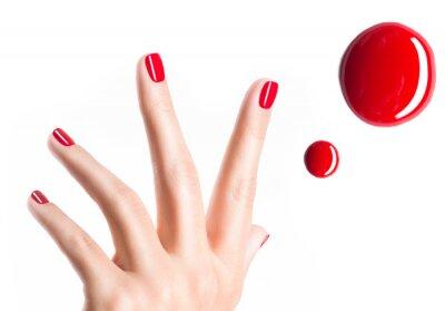 Fototapeta Piękne ręce samice z czerwonym manicure