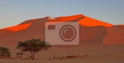Piękne wydmy w Afryce