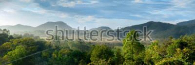 Fototapeta Pięknej panoramy Lasowy widok od wierzchołka góra