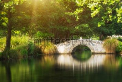 Fototapeta Piękny most w ogrodzie botanicznym pod ciepłym światłem słonecznym w lecie odbija nad staw wodą. Strzał w ogrodzie w Queenstown, Nowa Zelandia.