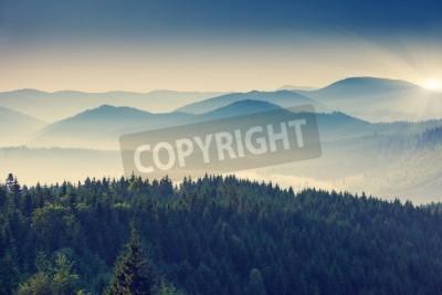 Fototapeta Piękny słoneczny dzień w góry. Karpacki, Ukraina, Europa.