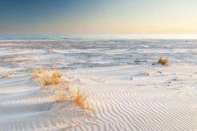 Fototapeta piękny widok na wydmy