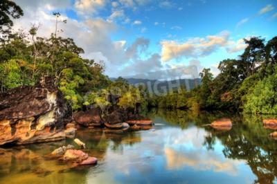Fototapeta Piękny widok tropikalnej dżungli na plaży Parku Narodowego Masoala na Madagaskarze