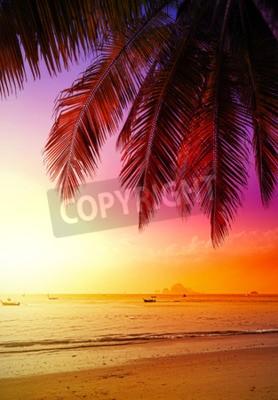Fototapeta Piękny zachód słońca nad plaży, wakacje tła.