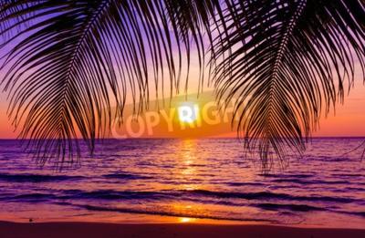 Fototapeta Piękny zachód słońca. Rajska plaża