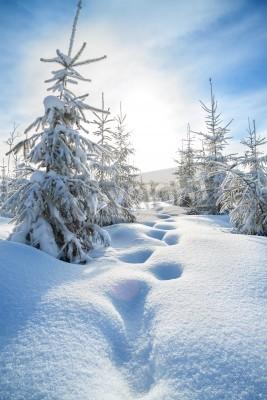 Fototapeta Piękny zimowy krajobraz z lasu i błękitne niebo