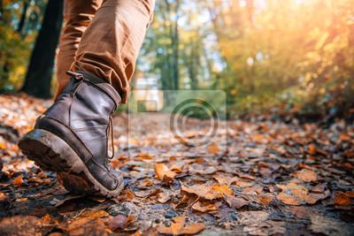 Fototapeta Piesi zabłocone buty