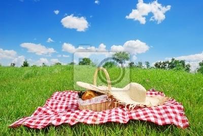 Piknik na łące w słoneczny dzień
