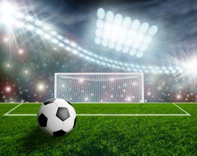 Fototapeta Piłka nożna na zielonej Stadion Arena