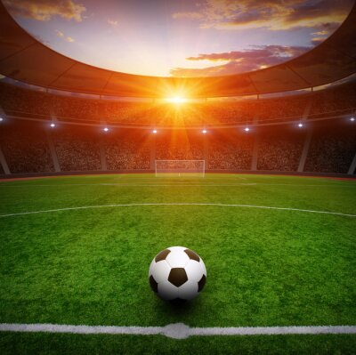 Fototapeta Piłka nożna na zielonej stadionu