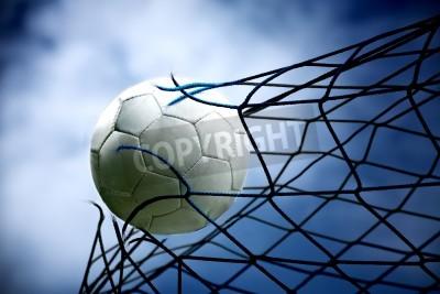Fototapeta Piłka nożna w bramce