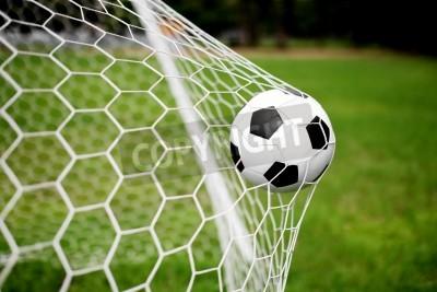 Fototapeta Piłka nożna w bramce netto